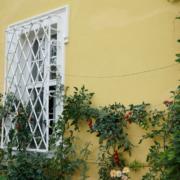 Außenansicht Schloss Birken mit Tomatenpflanzen
