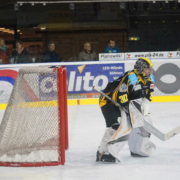 Goalie Bayreuth Tigers