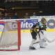 Goalie Bayreuth Tigers