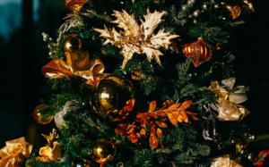 Weihnachtsbaum Natürlich.Ein Neues Outfit Für Weihnachtsbaum Und Co Bayreuther Tagblatt
