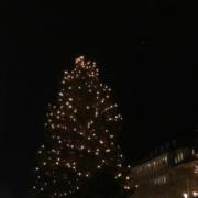 Christkindlesmarkt Bayreuth Baum mit Lichtern