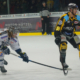 Bayreuth Tigers vs. EC Kassel Huskies