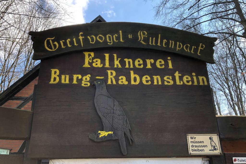 Die Falknerei in der Burg Rabenstein bietet regelmäßige Vogelschauen. Bild: Redaktionsarchiv