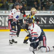 Bayreuth Tigers vs. Deggendorfer SC