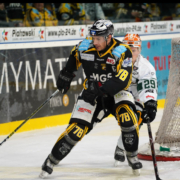 Bayreuth Tigers vs. Bietigheim Steelers