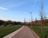 Wihelminenaue Spazierweg
