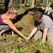 Pflanzaktion Klimawald Bayreuth
