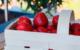Erdbeeren pflücken im Raum Bayreuth. Hier gibt's eine Übersicht über die Erdbeerfelder in der Region. Symbolbild: Pixabay