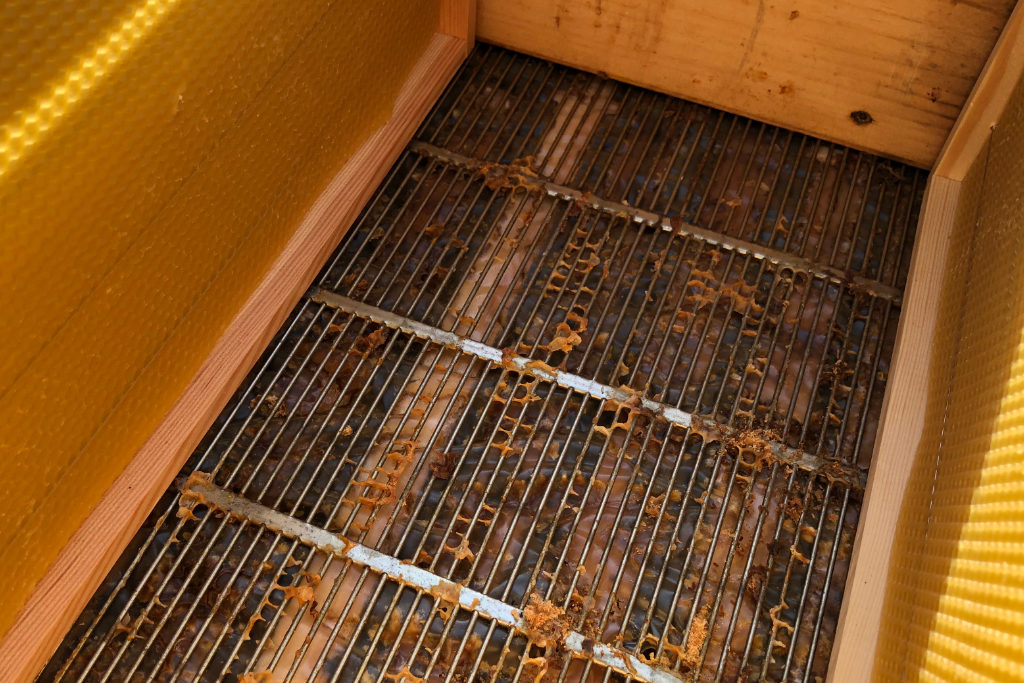 Ein Abdeckgitter trennt die Waben, die die Königin mit Eiern füllt, von jenen die ausschließlich mit Honig befüllt werden. Denn durch die Lücke im Gitter passt die Königin – im Gegensatz zu allen anderen Bienen – nicht hindurch.