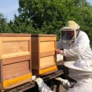 (v.l.) Imker Hans Neuner aus Creußen bringt Imker Karl-Heinz Breitzmann aus Bayreuth neue Bienenvölker an den Goldaxer See.