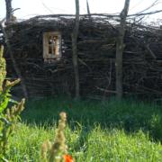 Naturgarten in der Wilhelminenaue. Eine Wand aus Totholz gebaut für Insekten.
