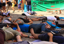 Protest in Bayreuth gegen Klimawandel und Artensterben