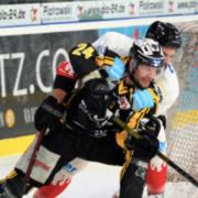 Bayreuth Tigers gegen Dresden Eislöwen.