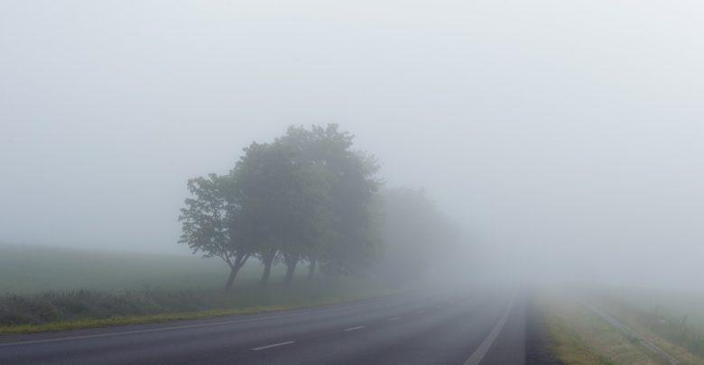 Eine 22-Jährige hat bei Leupoldsgrün einen Unfall verursacht. Nebel soll der Grund gewesen sein.