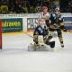 Bayreuth Tigers gegen EV Landshut. Foto: Karo Vögel