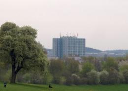 Die Untere Au in Wendelhöfen mit Blick auf die Stadt Bayreuth. Foto: Stephan Müller