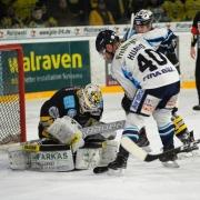 Bayreuth Tigers gegen Dresdner Eislöwen. Archivfoto: Karo Vögel
