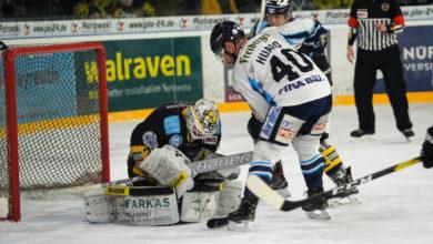 Bayreuth Tigers gegen Dresdner Eislöwen. Foto: Karo Vögel