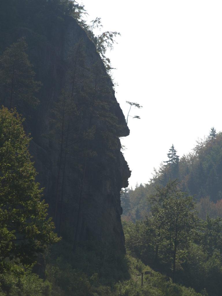 Ein Fels wie das Profil von Richard Wagner:Richard-Wagner-Felsen im Ailsbachtal.