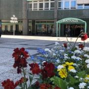 Der zweite und dritte Bürgermeister der Stadt Bayreuth sollen verstärkt eingebunden werden. Die Bürgermeister erhalten spezielle Aufgaben. Symbolfoto: Redaktion