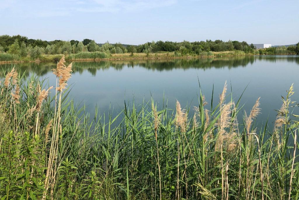 Der Goldaxer See bei Bayreuth,