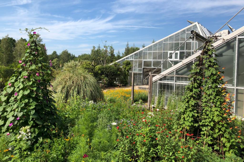 """Im Ökologisch Botanischen Garten Bayreuth findet um Juli das Fest """"Unikat"""" statt."""
