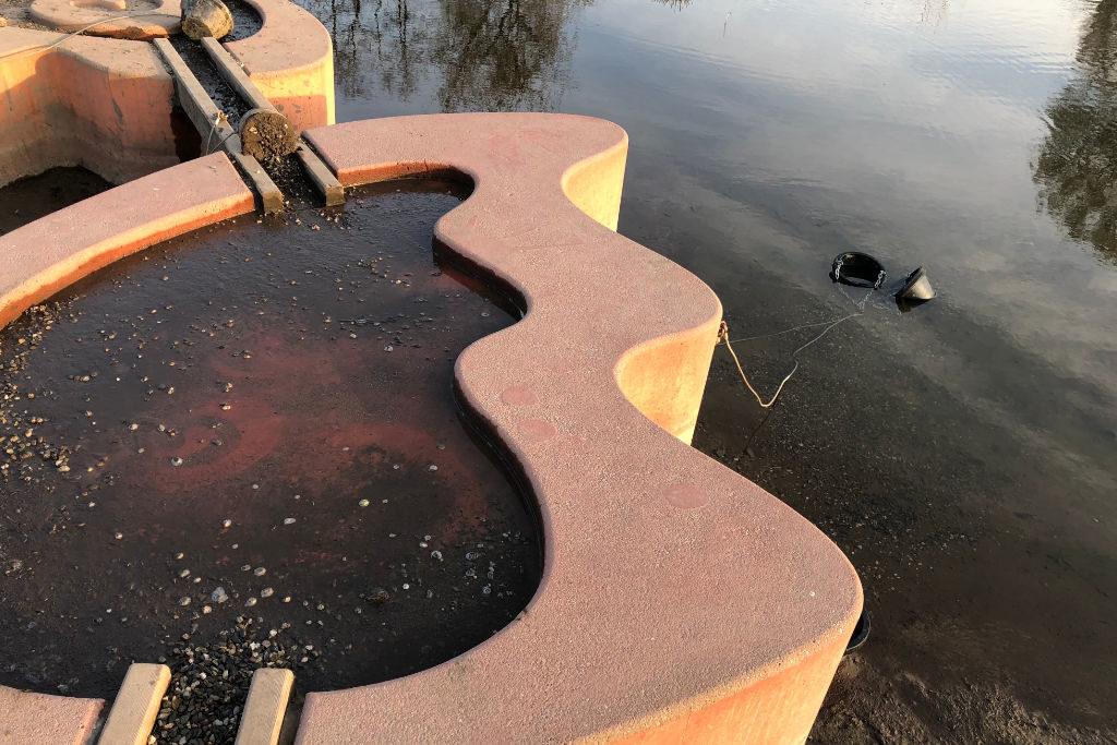 Wasserpumpe Wilhelminenaue
