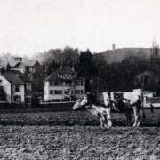 Gartenstadt-Villen an der Nibelungenstraße. Foto: Archiv Bernd Mayer