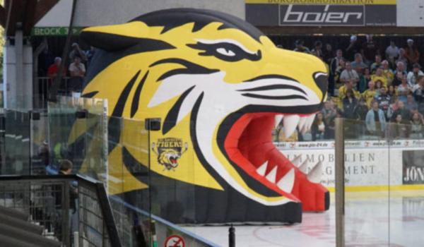 Die Bayreuth Tigers haben eine überraschende Personalentscheidung bekannt gegeben. Archiv: Frederik Eichstädt
