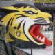 Der Tigerkäfig der Bayreuth Tigers. Archiv: Redaktion