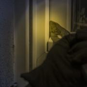 Ein Einbrecher ist in die Staatliche Fachoberschule und Berufsoberschule in Bayreuth eingebrochen. Symbolfoto: Pixabay