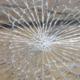 Einbrecher haben ein Fenster eingeschlagen. Symbolfoto: Pixabay