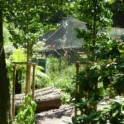 Der Tierpark Röhrensee in Bayreuth wurde erneut ausgezeichnet. Foto: Stadtgartenamt