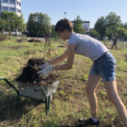 Anne Reinhard sammelt lose Pflanzen für den Naturgarten in einer Schubkarre. Archivfoto: Redaktion