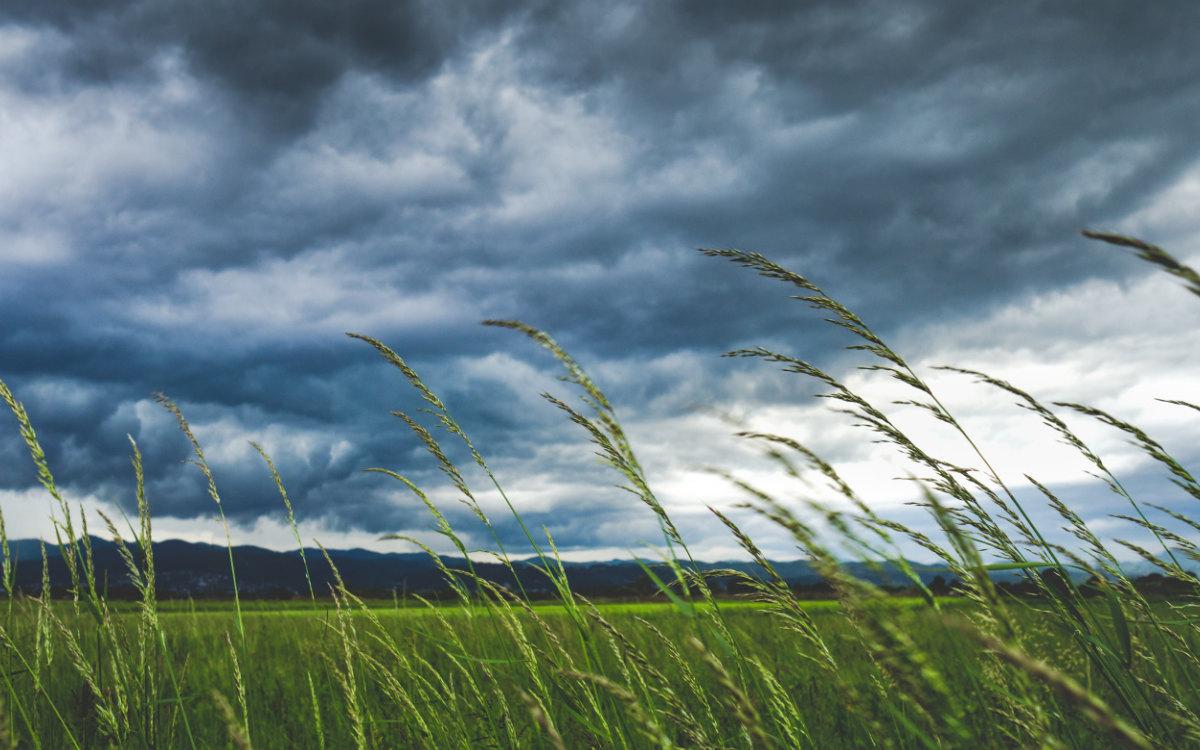 Wetterwarnung für Bayreuth Stadt und Landkreis. Der DWD warnt vor Windböen. Symbolfoto: Ivan Vranić/unsplash