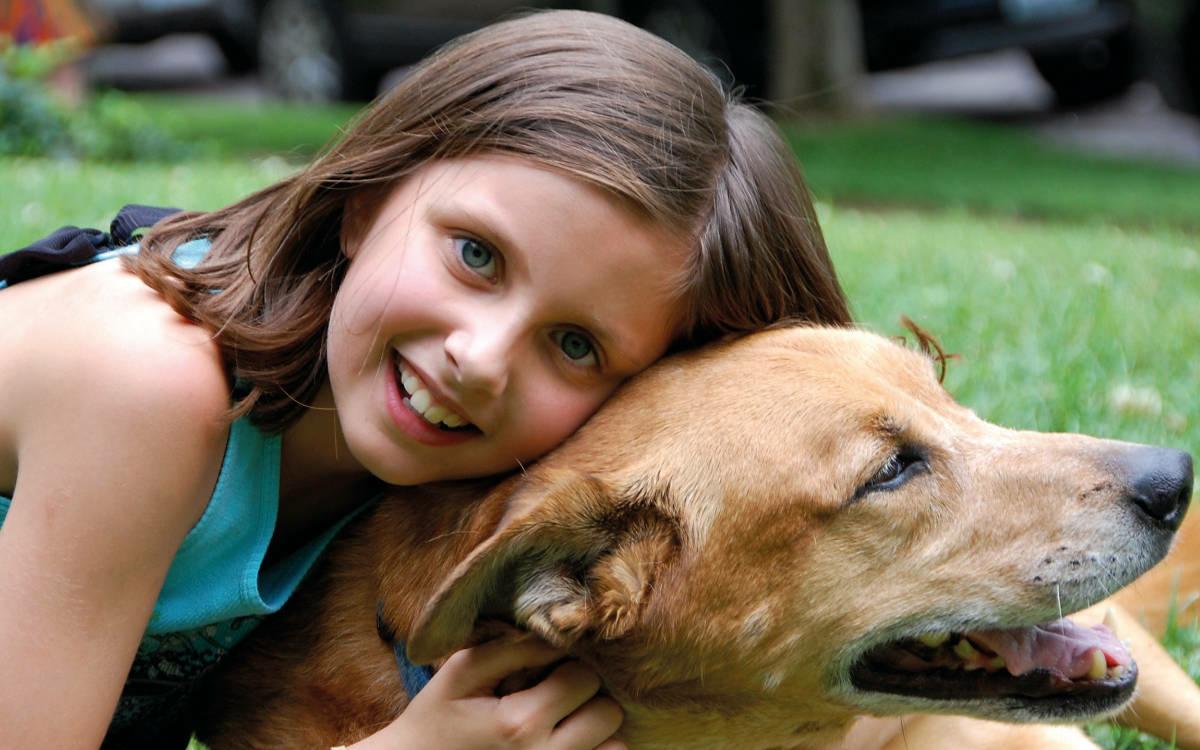 Ein Haustier bedeutet Verantwortung. Darauf möchte der kostenlose Tierschutzunterricht die Kinder vorbereiten. Foto: pixabay.com/Purina/akz-o