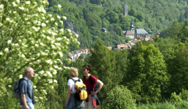 Blick auf Bad Berneck. Foto: A. Hub