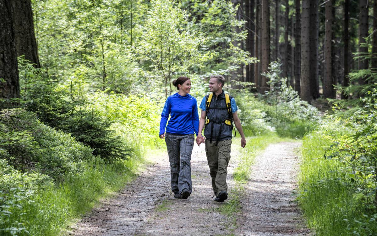 Wanderer im Fichtelgebirge. Foto: F. Trykowski