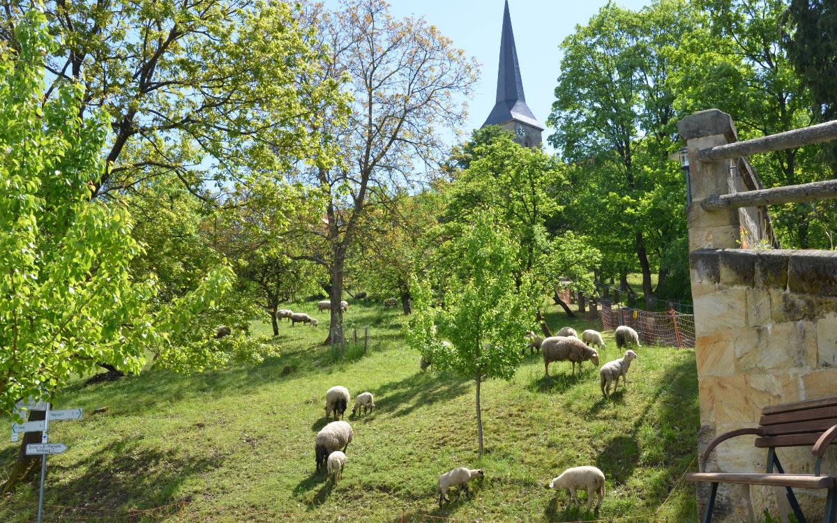 Kirchberg in Gesees. Foto: Georg Nützel