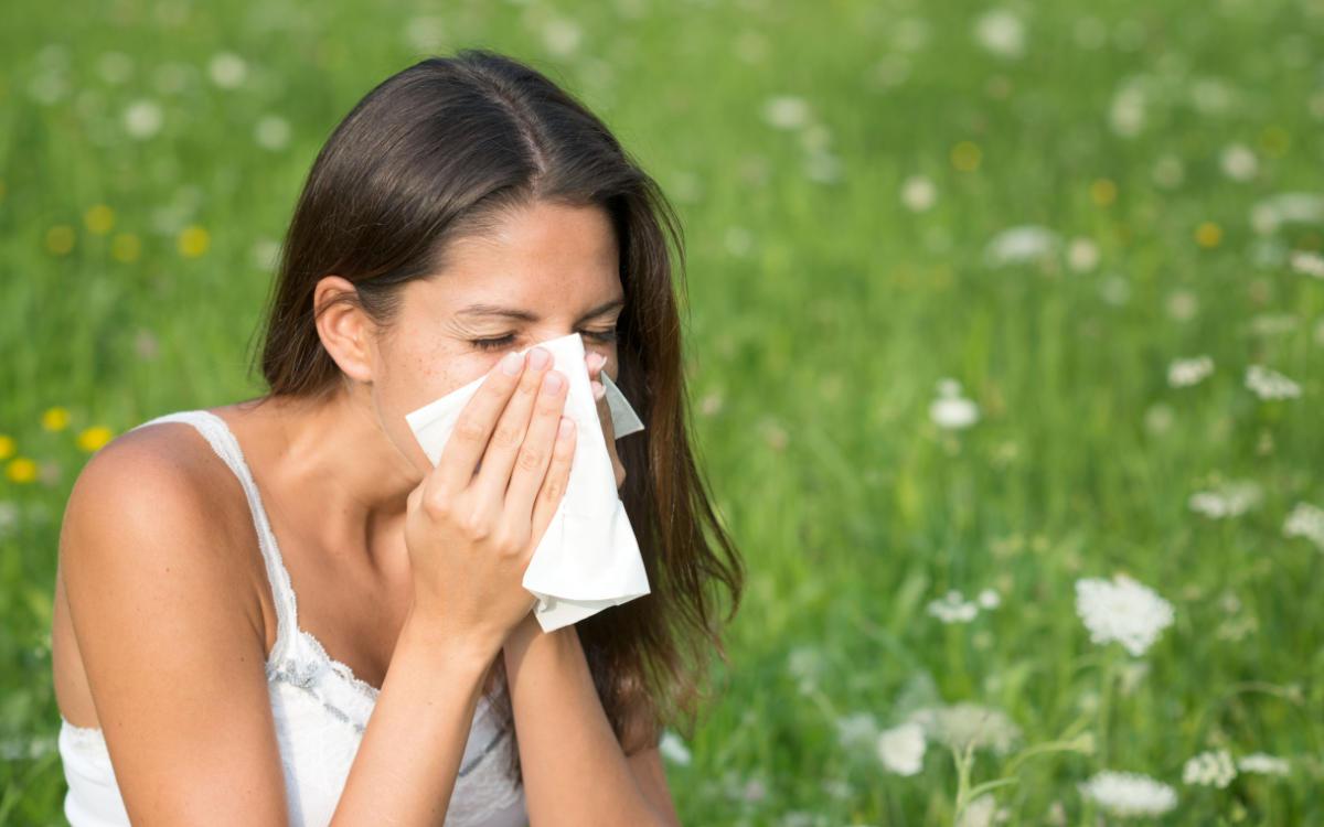 Gräser- und Getreidepollen machen Allergikern im Sommer zu schaffen. Betroffene sollten jetzt aktiv werden und einen Allergologen aufsuchen. Foto: djd/Bencard Allergie/Getty Images/4FR