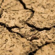Trockenheit in Deutschland. Wie sieht es mit der Bayreuther Wasserversorgung aus? Symbolfoto: pixabay