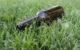 Ein Bierlaster im Kreis Bayreuth hat bei einem Unfall die gesamte Bierladung bei Plech verloren. Symbolfoto: pixabay