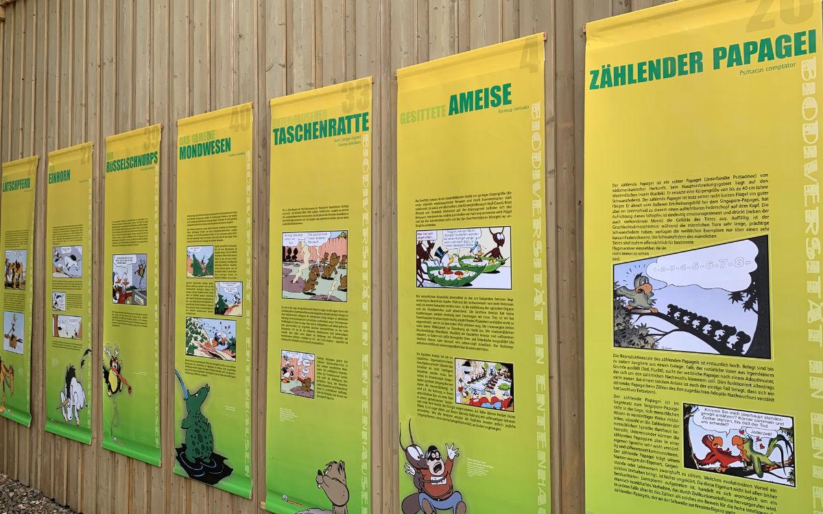 Die Ausstellung über Biodiversität in Entenhausen auf dem Kraut & Rüben Festival in Bayreuth. Foto: Katharina Adler