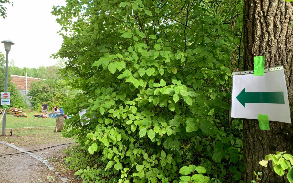 Rüben bayreuth open und kraut air Wilhelminenaue
