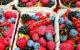 In Bayern wird ein Beerenmix zurückgerufen. Darin können Noroviren vorhanden sein. Symbolfoto: pixabay