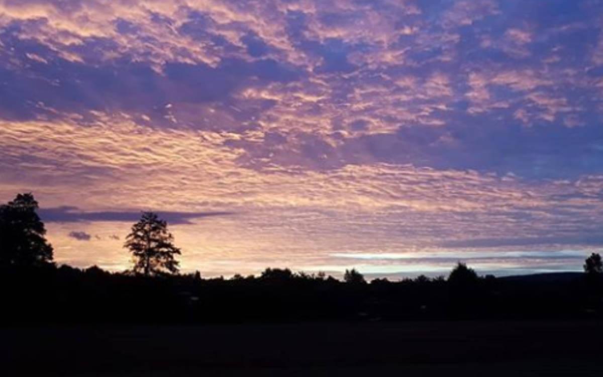Sonnenaufgang am Studentenwald Bayreuth. Foto: Neele Boderius