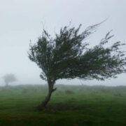 Warnung vor Sturmböen und Windböen in der Region Bayreuth. Der DWD hat am 21. Januar eine Wetter-Warnung herausgegeben. Symbolfoto: pixabay