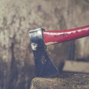 Tödlicher Unfall bei Waldarbeiten im Landkreis Kulmbach. Symbolfoto: pixabay
