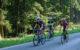 """Wegen des Wettkampfs """"Bayreuther Contre la Montre"""" ist die Staatstraße zwischen Obernsees und Plankenfels voll gesperrt. Foto: pixabay"""
