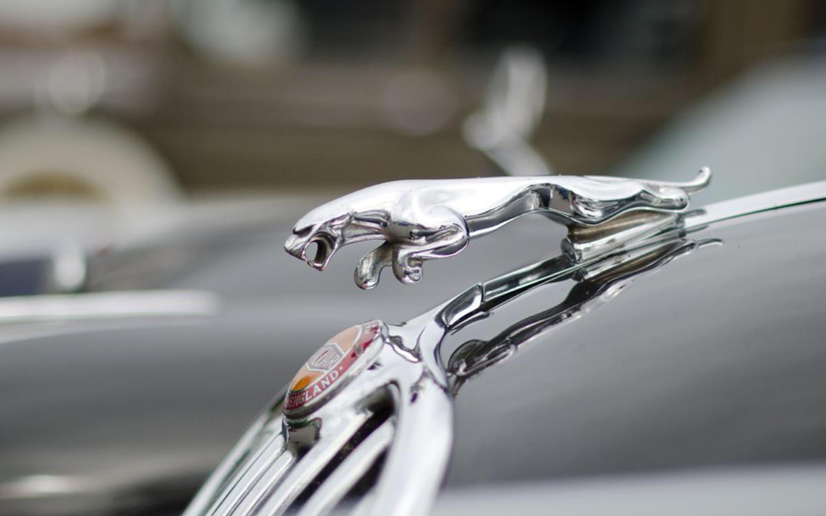 Unfall: Ein Jaguar ist auf der A9 in die Böschung geschleudert. Symbolfoto: Pixabay
